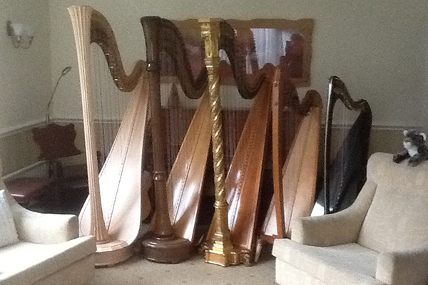 Harpist in the west midlands